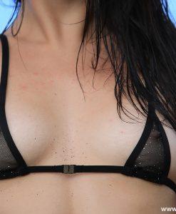 shiny lingerie thebikini 10